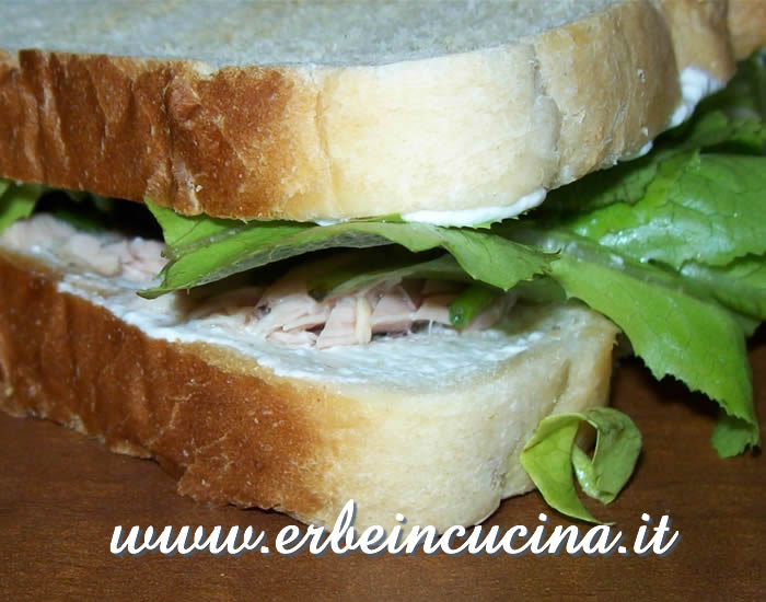 Tuna sandwiches with nigella and Thai basil