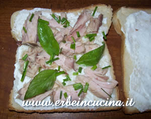 Sandwich 2: tuna and herbs