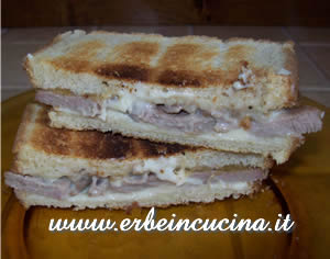 Turkey Sandwich with Wild Thyme and Gorgonzola