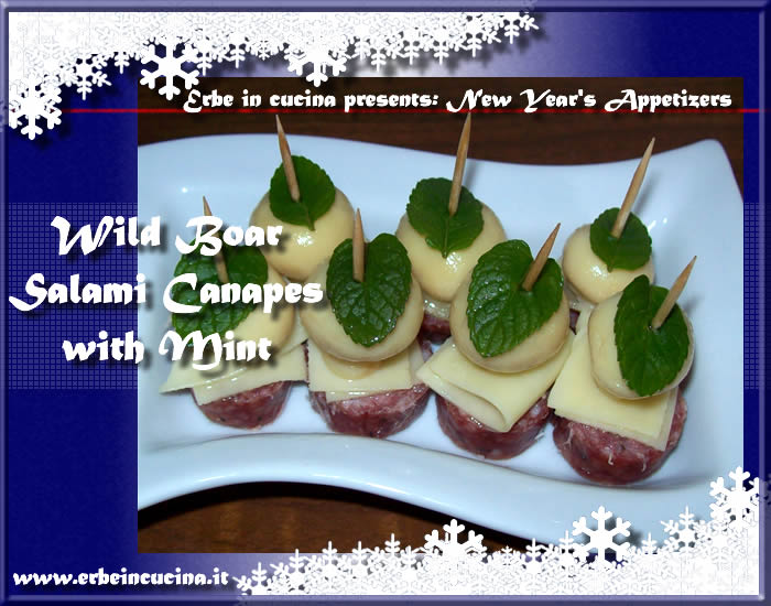Wild boar salami canapes with mint
