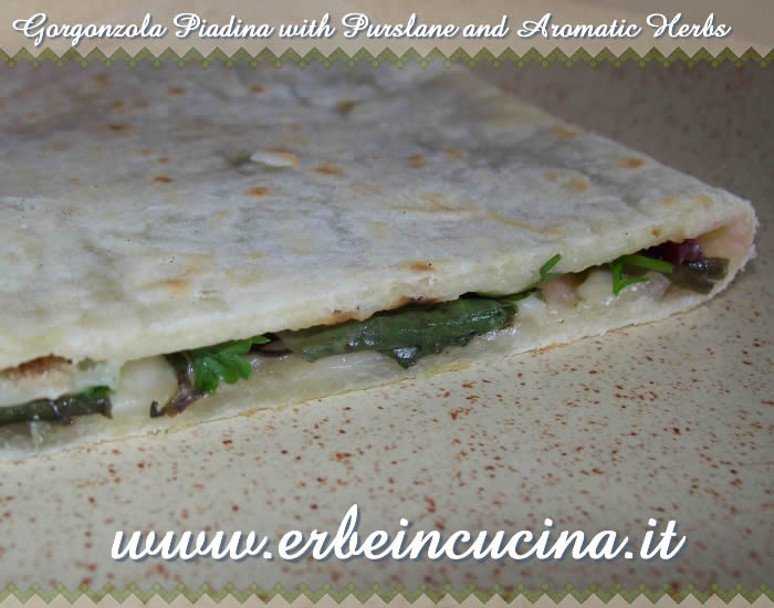 Gorgonzola piadina with purslane and aromatic herbs