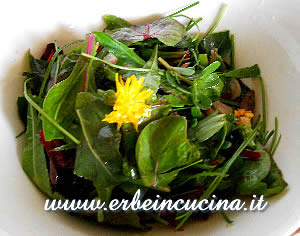 Dandelion and purslane salad