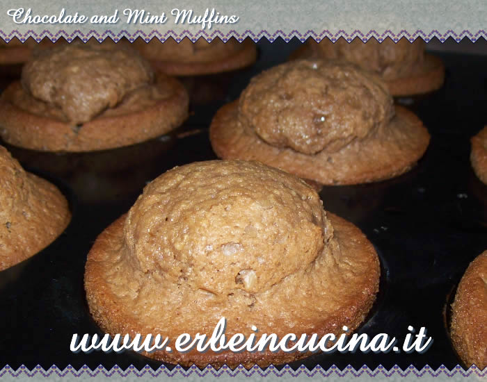 Chocolate and mint muffins