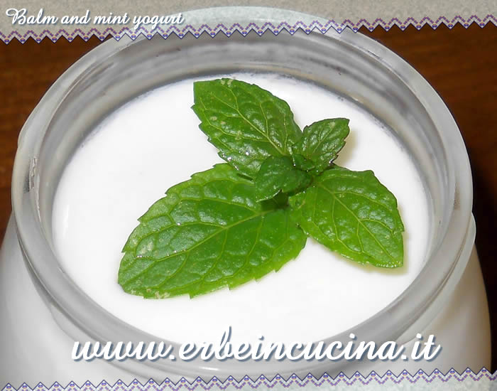 Balm and mint yogurt