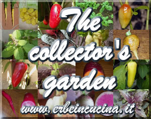 The collector s garden