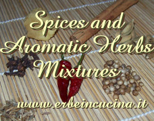 Spices and aromatic herbs mixtures